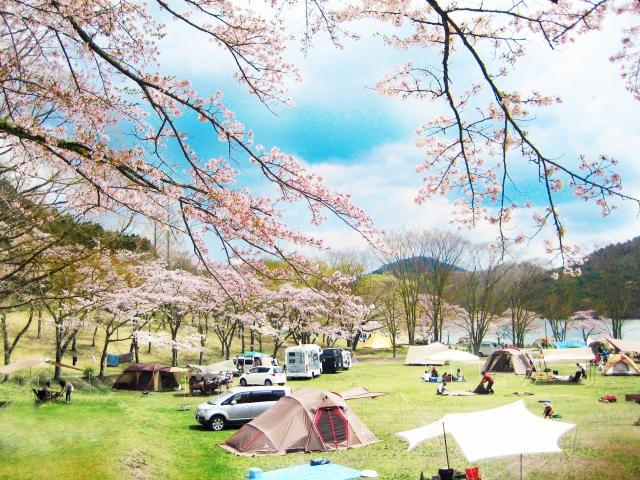 場 関西 キャンプ